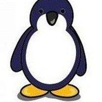 Pingwin krok 10