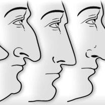 typy nosów - zadarty, orli, grecki, rzymski, nubijski