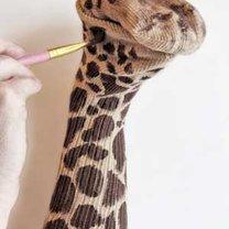 żyrafa ze skarpety - krok 5