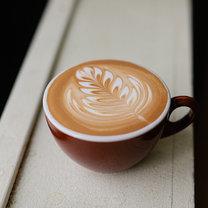 rozeta na kawie