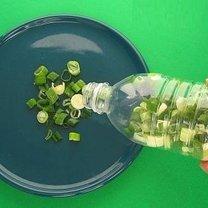 Przechowywanie cebuli zielonej
