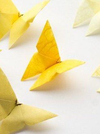 motyl origami