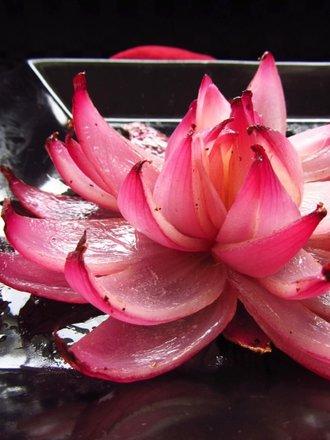 kwiat z cebuli