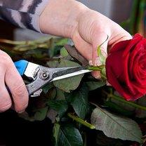 serce z róż i truskawek - krok 2