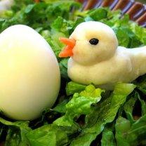 Kurczaki z ziemniaków 8