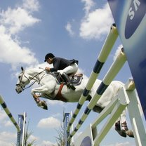 skoki konne