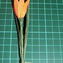 Wiosenne kwiaty z bibuły 5