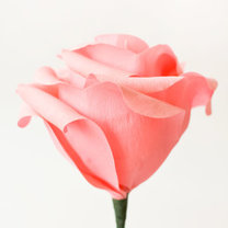 duży kwiat z papieru - krok 17