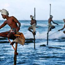 wakacje w Sri Lance