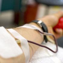 dawca krwi