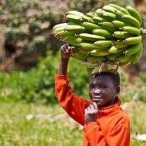 Rwanda - wycieczka