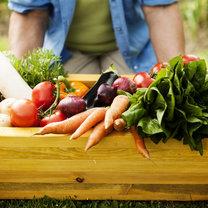 dieta przy nieżycie żołądka