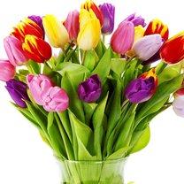 cięte tulipany w wazonie