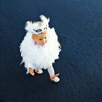 Biały Łabędź Halloween
