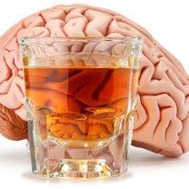 alkohol a mózg