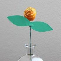 róża z pomarańczy