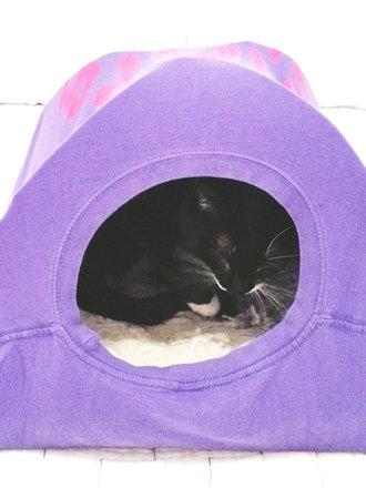 9fdb84631fb9a1 Jak zrobić namiot dla kota ze starej koszulki? - porada Tipy.pl