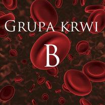 grupa krwi b