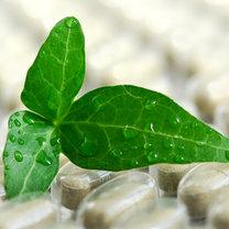 medycyna naturalna, ziołolecznictwo