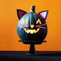 dynia na Halloween kot