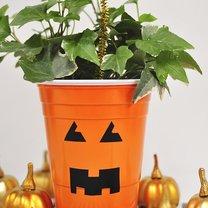 Jak zrobić doniczkę na Halloween z plastikowego kubka?
