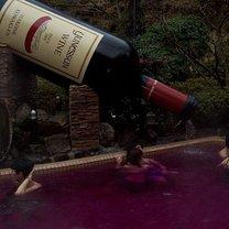 sposób na wykorzystanie resztek wina - krok 5