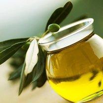 Ekstrakt z gałązki oliwnej