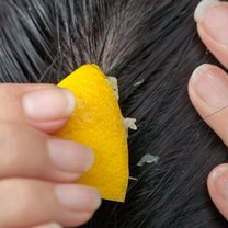 Cytryna we włosy
