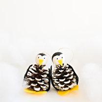 Jak zrobić pingwina z szyszek na choinkę krok 1