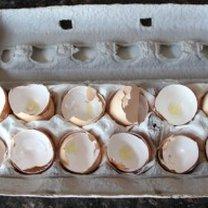 proszek wapniowy ze skorupek jaj - krok 1