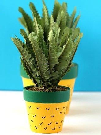 doniczka ananas