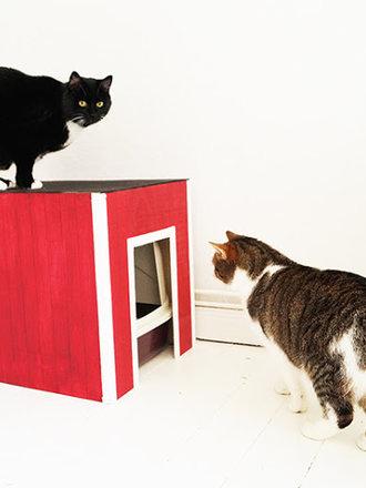 8724b53443995a Jak zrobić osłonę na kuwetę dla kota? - porada Tipy.pl