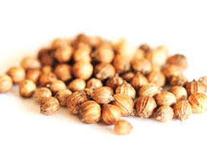 Nasiona kolendry