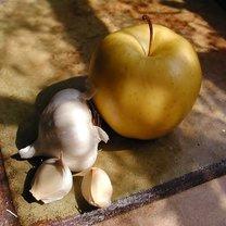 Połączenie octu jabłkowego i czosnku
