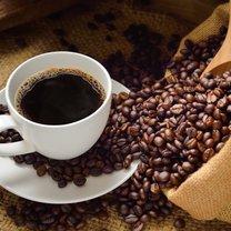 Kofeina zastosowanie