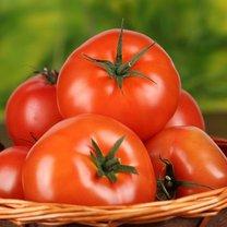 Czy przechowywać pomidory w lodówce