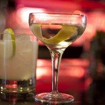 Gin właściwości lecznicze