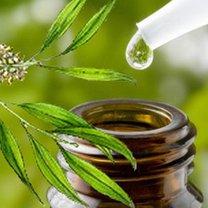 Olejek z drzewa herbacianego na pleśń