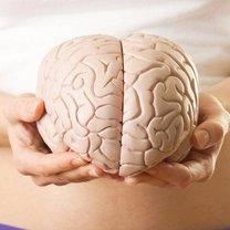 Jak dbać o swój mózg
