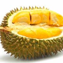 Owoc durian właściwości