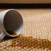 plamy na dywanie