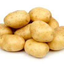 sok z ziemniaka
