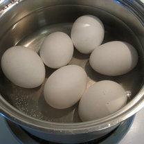jajka w zimnej wodzie