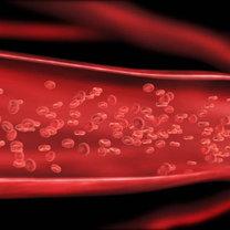 tętnice