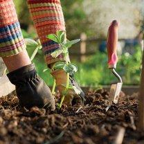 produkty użyźniające glebę