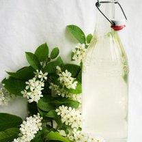 Sok z kwiatów wiśni