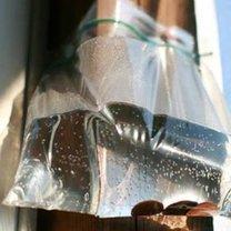 odstraszanie komarów