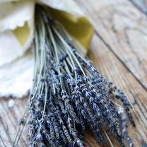 Domowy balsam lawendowy