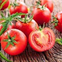świeżość pomidorów