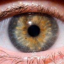lepszy wzrok